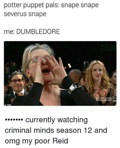 puppeteer: potter puppet pals: snape snape  Severus Snape  mee: DUMBLEDORE  tb  ASAGAWARDS ••••••• currently watching criminal minds season 12 and omg my poor Reid