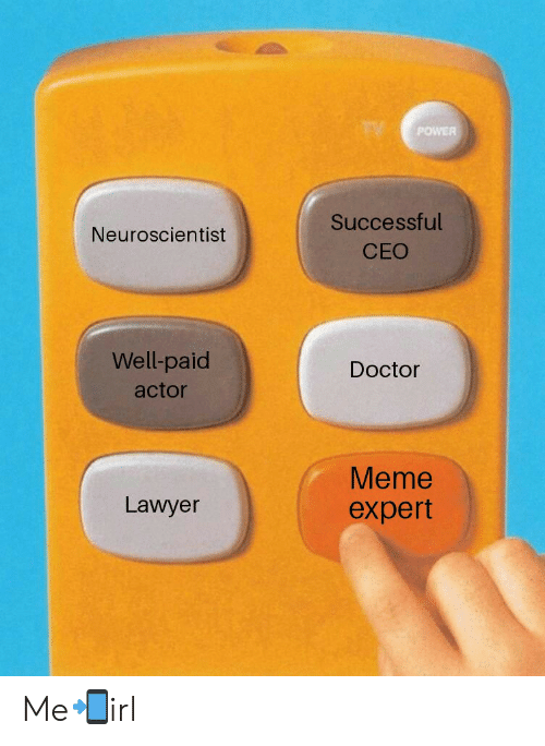 Doctor Meme: POWER  Successful  CEO  Neuroscientist  Well-paid  actor  Doctor  Meme  expert  Lawyer Me📲irl