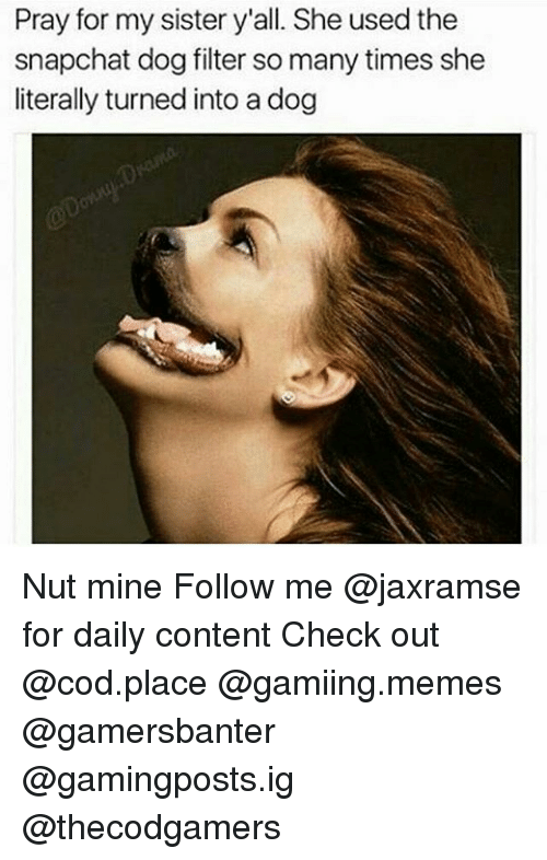dog filter: Pray for my sister y'all. She used the  snapchat dog filter so many times she  literally turned into a dog Nut mine Follow me @jaxramse for daily content Check out @cod.place @gamiing.memes @gamersbanter @gamingposts.ig @thecodgamers