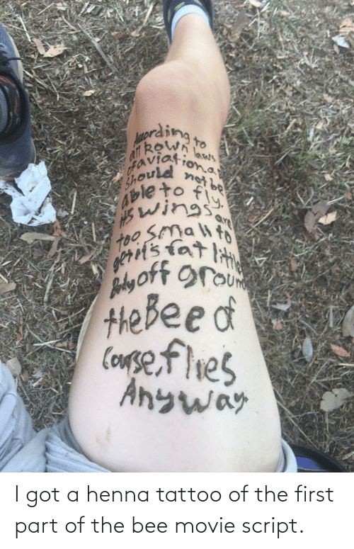 the bee movie: prding.  to  afl RoWn  not be  kewn laws  Should ona  Ableto fy.  Swings  too Smalt  gett's tat lit  Barly oft rou  Невееdа  CoMse,flies  Anyway  are I got a henna tattoo of the first part of the bee movie script.