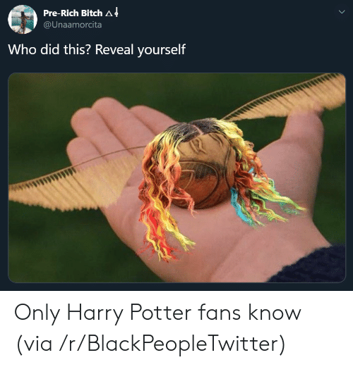 Who Did This: Pre-Rich Bitch A 4  @Unaamorcita  Who did this? Reveal yourself Only Harry Potter fans know (via /r/BlackPeopleTwitter)
