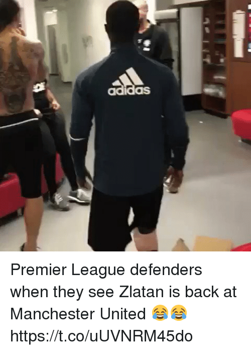Premier League, Soccer, and Manchester United: Premier League defenders when they see Zlatan is back at Manchester United 😂😂 https://t.co/uUVNRM45do