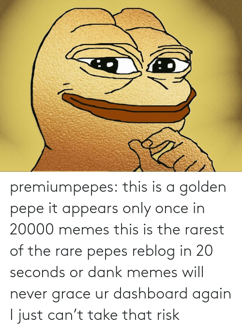Pepe: premiumpepes:  this is a golden pepe it appears only once in 20000 memes this is the rarest of the rare pepes reblog in 20 seconds or dank memes will never grace ur dashboard again   I just can't take that risk