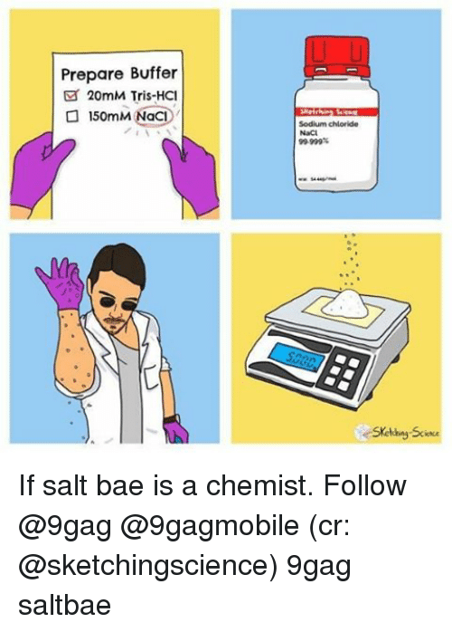 Salt Bae: Prepare Buffer  20mM Tris-HCI  o 1  NaCl  50mM Sodium chloride  99.999%  Skeldwy Sc If salt bae is a chemist. Follow @9gag @9gagmobile (cr: @sketchingscience) 9gag saltbae