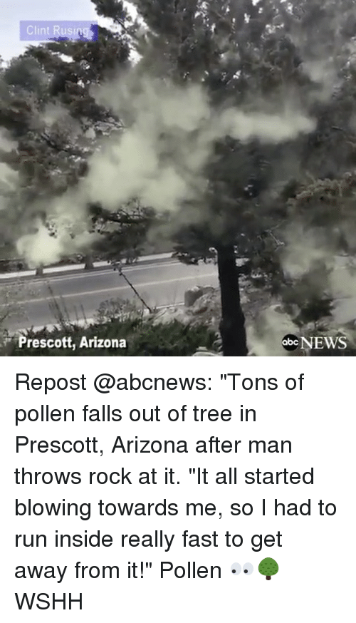 "Memes, Abc News, and 🤖: Prescott, Arizona  abc NEWS Repost @abcnews: ""Tons of pollen falls out of tree in Prescott, Arizona after man throws rock at it. ""It all started blowing towards me, so I had to run inside really fast to get away from it!"" Pollen 👀🌳 WSHH"
