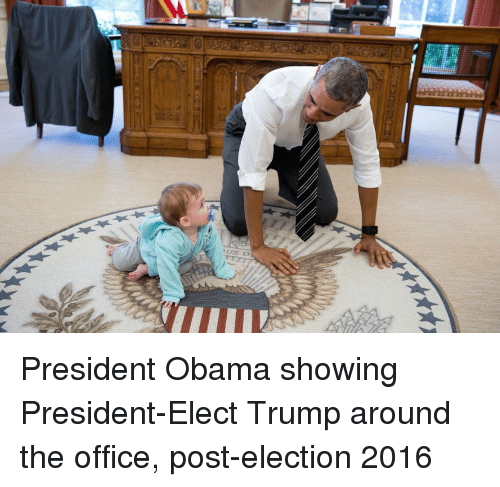 president obama: President Obama showing President-Elect Trump around the office, post-election 2016