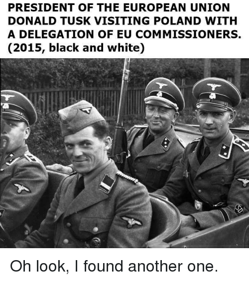 Tusk: PRESIDENT OF THE EUROPEAN UNION  DONALD TUSK VISITING POLAND WITH  A DELEGATION OF EU COMMISSIONERS,  (2015, black and white) Oh look, I found another one.