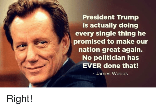 Memes, Trump, and James Woods: President Trump  is actually doing  every single thing he  promised to make our  nation great again.  No politician has  EVER done that!  James Woods Right!