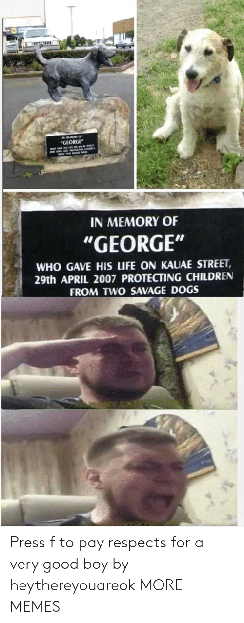 Press F: Press f to pay respects for a very good boy by heythereyouareok MORE MEMES