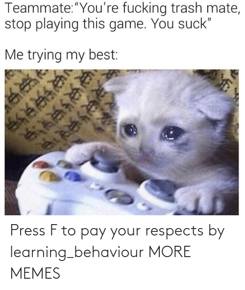 Press F: Press F to pay your respects by learning_behaviour MORE MEMES