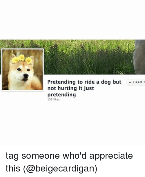 Memes, Appreciate, and Tag Someone: Pretending to ride a dog but  Liked  not hurting it just  pretending  152 likes tag someone who'd appreciate this (@beigecardigan)
