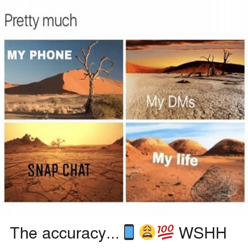 Life, Memes, and Phone: Pretty much  MY PHONE  My DMS  My life  SNAP CHAT The accuracy...📱😩💯 WSHH
