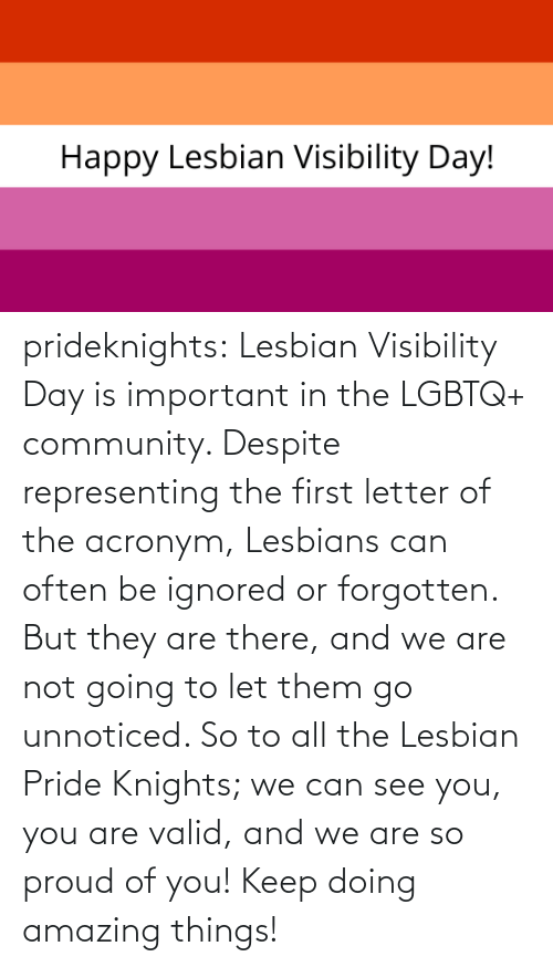 knights: prideknights:  Lesbian Visibility Day is important in the LGBTQ+ community. Despite representing the first letter of the acronym, Lesbians can often be ignored or forgotten. But they are there, and we are not going to let them go unnoticed. So to all the Lesbian Pride Knights; we can see you, you are valid, and we are so proud of you! Keep doing amazing things!