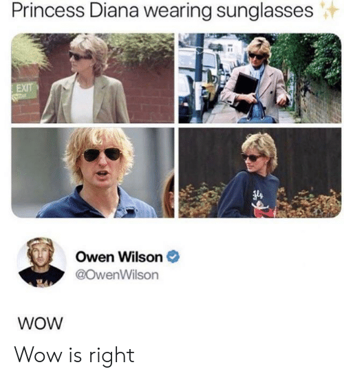 owen: Princess Diana wearing sunglasses  EXIT  Owen Wilson  @OwenWilson  WOW Wow is right