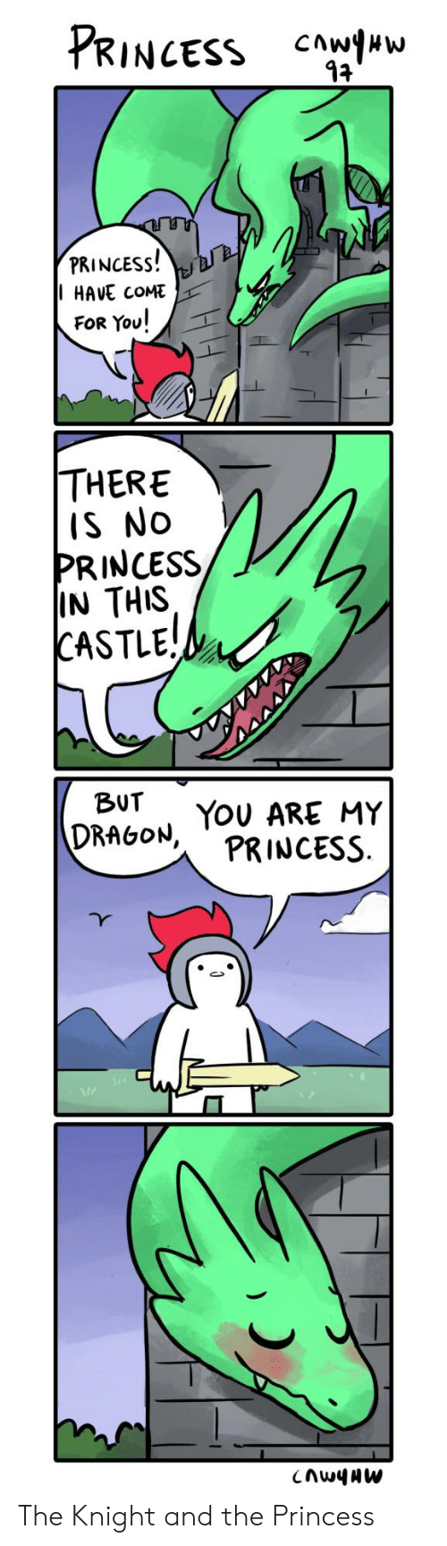you there: PRINCESS  PRINCESS!  HAVE COME  FOR You!  THERE  IS NO  PRINCESS  IN THIS  CASTLE!  BUT  DRAGON, TOU ARE MY  PRINCESS  CnwyAW The Knight and the Princess