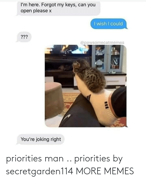Priorities: priorities man .. priorities by secretgarden114 MORE MEMES