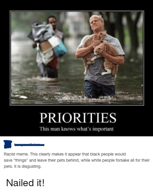 """Meme, Memes, and Tumblr: PRIORITIES  This man knows what's important  Racist meme. This clearly makes it appear that black people would  save """"things"""" and leave their pets behind, while white people forsake all for their  pets. It is disgusting. Nailed it!"""