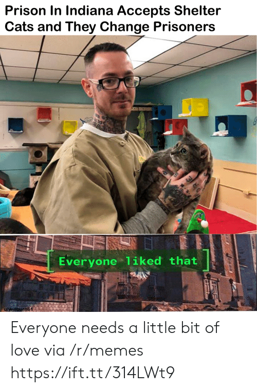 prisoners: Prison In Indiana Accepts Shelter  Cats and They Change Prisoners  Everyone liked that  u/willburn61 Everyone needs a little bit of love via /r/memes https://ift.tt/314LWt9