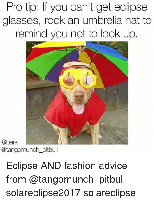 Remindes: Pro tip: If you can't get eclipse  glasses, rock an umbrella hat to  remind you not to look up.  @bark  @tangomunch_pitbull Eclipse AND fashion advice from @tangomunch_pitbull solareclipse2017 solareclipse