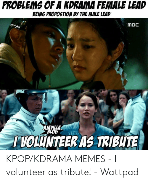 I Volunteer Meme: PROBLEMS OF A KDRAMA FEMALE LEAD  BEING PROPOSTION BY THE MALE LEAD  MCC  I TOLUNTEER AS TRIBUTE KPOP/KDRAMA MEMES - I volunteer as tribute! - Wattpad