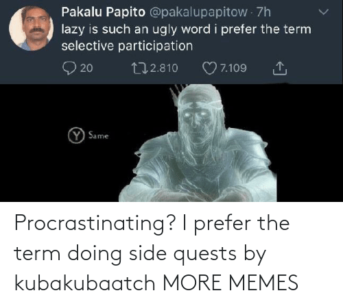 term: Procrastinating? I prefer the term doing side quests by kubakubaatch MORE MEMES