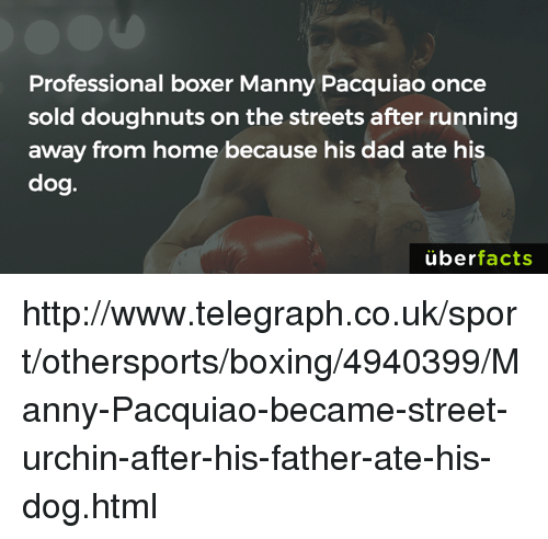 Mannis: Professional boxer Manny Pacquiao once  sold doughnuts on the streets after running  away from home because his dad ate his  dog.  uber  facts http://www.telegraph.co.uk/sport/othersports/boxing/4940399/Manny-Pacquiao-became-street-urchin-after-his-father-ate-his-dog.html