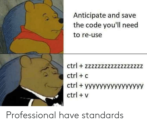 Standards: Professional have standards