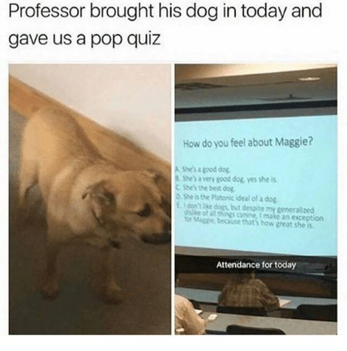 Dogs, Pop, and Best: Professor brought his dog in today and  gave us a pop quiz  How do you feel about Maggie?  A Shes a good dog  S Shes a very sood dog yes she is  C She's the best dog  D She is the Platonic ideal of a dog  E.I dont lke dogs, but despite my generalized  of all things canine. I make an exception  for Maggie, because that's how great she is  Attendance for today