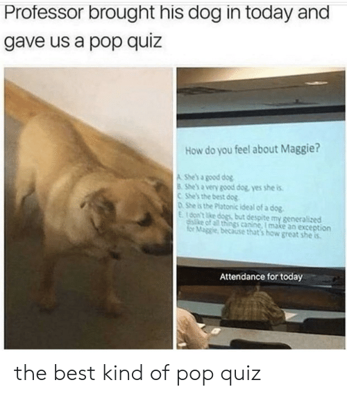 Best Dog: Professor brought his dog in today and  gave us a pop quiz  How do you feel about Maggie?  A She's a good dog  8 She's a very good dog, yes she is  CShe's the best dog  DShe is the Platonic ideal of a dog.  E16on't ke dogs but despite my generalized  disike of all things canine, I make an exception  for Maggie, because that's how great she is  Attendance for today the best kind of pop quiz
