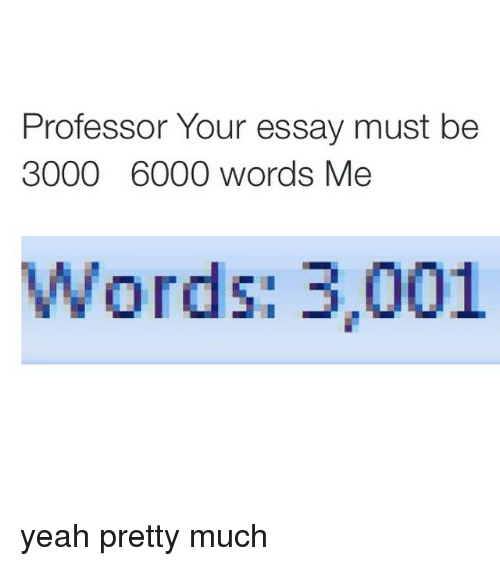 how many words in an essay