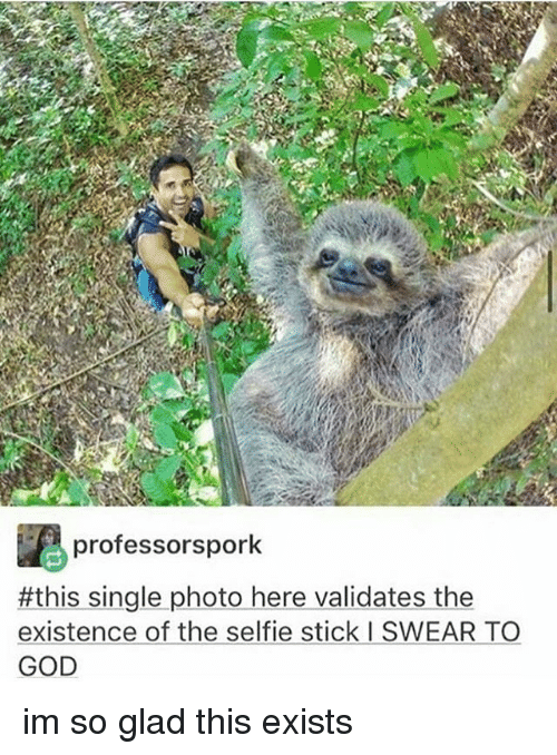 God, Memes, and Selfie: professors pork  #this single photo here validates the  existence of the selfie stick l SWEAR TO  GOD im so glad this exists