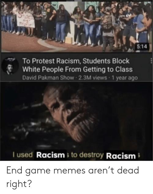 Game Memes: Profie  5:14  To Protest Racism, Students Block  White People From Getting to Class  David Pakman Show 2.3M views 1 year ago  I used Racisms to destroy Racism End game memes aren't dead right?
