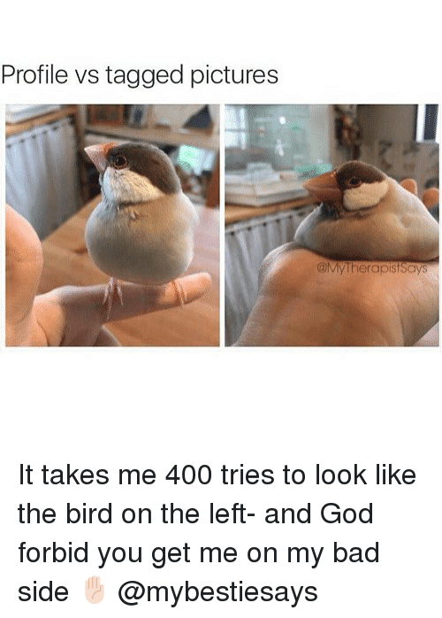 Bad, God, and Pictures: Profile vs tagged pictures  @My Therapist Says It takes me 400 tries to look like the bird on the left- and God forbid you get me on my bad side ✋🏻 @mybestiesays