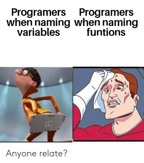 Anyone, When, and Programers: Programers Programers  when naming when naming  variables  funtions Anyone relate?