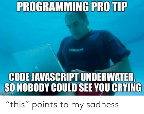 "Crying, Pro, and Programming: PROGRAMMING PRO TIP  CODE JAVASCRIPT UNDERWATER  SO NOBODY COULD SEE YOU CRYING  imgfip.com ""this"" points to my sadness"