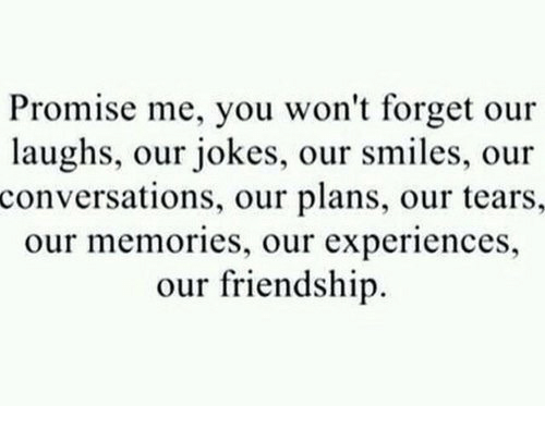 Jokes: Promise me, you won't forget our  laughs, our jokes, our smiles, our  conversations, our plans, our tears,  our memories, our experiences,  our friendship
