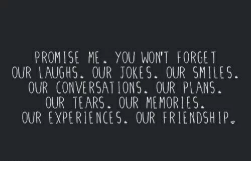 Jokes: PROMISE ME. YOU WON'T FORGET  OUR LAUGHS. OUR JOKES. OUR SMILES.  OUR CONVERSATIONS. OUR PLANS  OUR TEARS. OUR MEMORIES.  OUR EXPERIENCES. OUR FRIENDSHIP