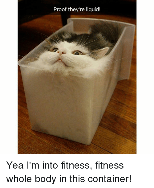 Funny, Fitness, and Proof: Proof they're liquid! Yea I'm into fitness, fitness whole body in this container!