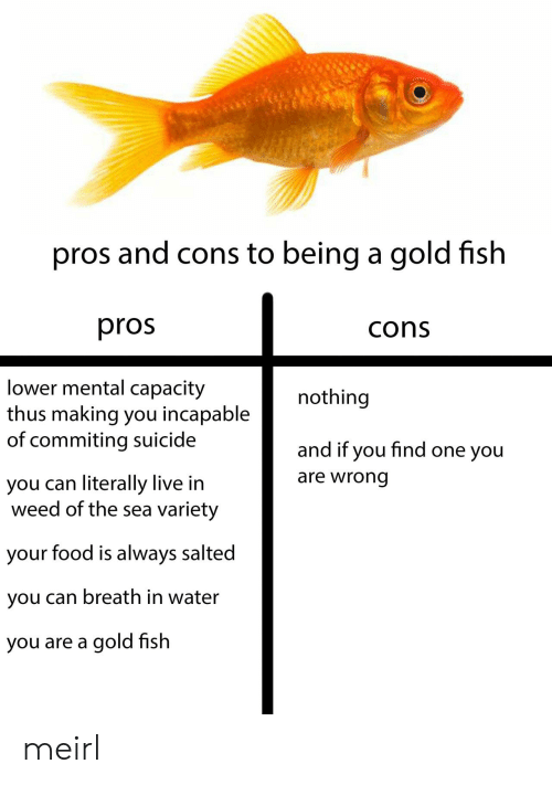 One You: pros and cons to being a gold fish  pros  cons  lower mental capacity  thus making you incapable  of commiting suicide  nothing  and if you find one you  are wrong  you can literally live in  weed of the sea variety  your food is always salted  you can breath in water  you are a gold fish meirl