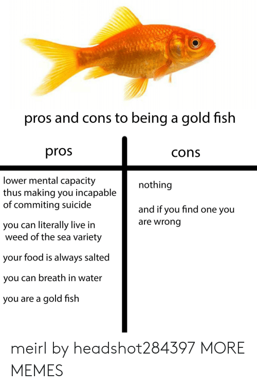 One You: pros and cons to being a gold fish  pros  cons  lower mental capacity  thus making you incapable  of commiting suicide  nothing  and if you find one you  are wrong  you can literally live in  weed of the sea variety  your food is always salted  you can breath in water  you are a gold fish meirl by headshot284397 MORE MEMES