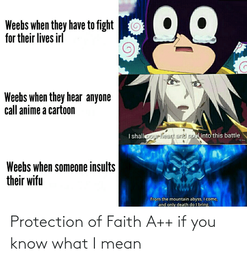 if you know what i mean: Protection of Faith A++ if you know what I mean