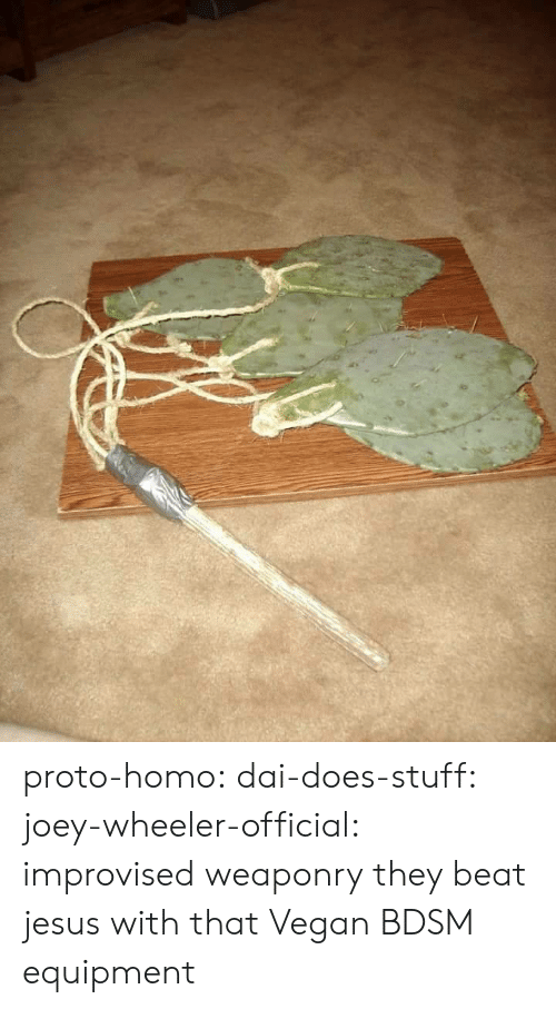 Joeys: proto-homo: dai-does-stuff:  joey-wheeler-official: improvised weaponry they beat jesus with that   Vegan BDSM equipment