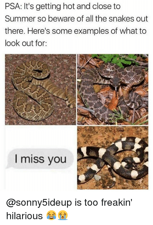 Memes, Summer, and Snakes: PSA: It's getting hot and close to  Summer so beware of all the snakes out  there. Here's some examples of what to  look out for:  I miss you @sonny5ideup is too freakin' hilarious 😂😭