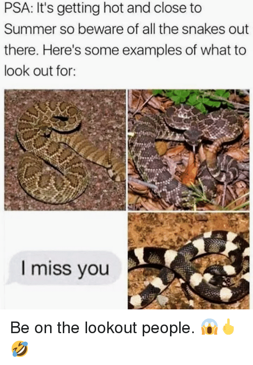 Lookout: PSA: It's getting hot and close to  Summer so beware of all the snakes out  there. Here's some examples of what to  look out for:  I miss vou <p>Be on the lookout people. 😱🖕🤣 </p>