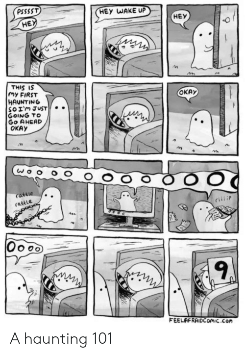 Haunting: PSSSST  HEY WAKE UP  HEY  HE  THIS IS  My FIRST  HAUNTING  SoIm JUST.  GOING TO  Go AHEAD  OKAY  ОКАУ  attle  rattle  Oooo  FEELAFRAIDCOmiC.com A haunting 101