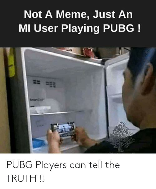 Tell The Truth: PUBG Players can tell the TRUTH !!