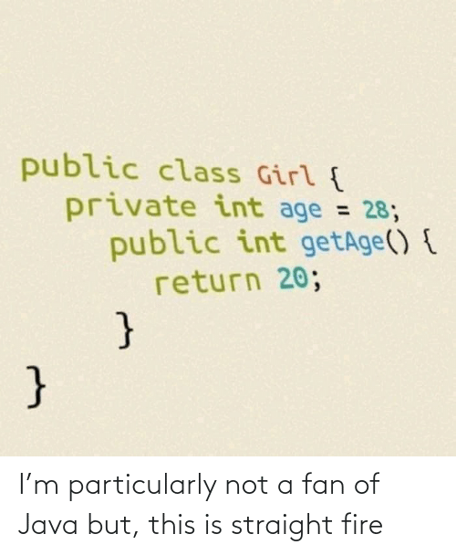 int: public class Girl {  private int age = 28;  public int getAge() {  return 20;  %3D  } I'm particularly not a fan of Java but, this is straight fire