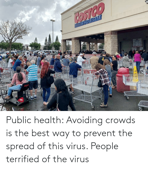 public: Public health: Avoiding crowds is the best way to prevent the spread of this virus. People terrified of the virus