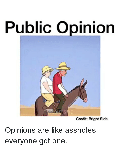 Asshols: Public opinion  Credit: Bright Side Opinions are like assholes, everyone got one.