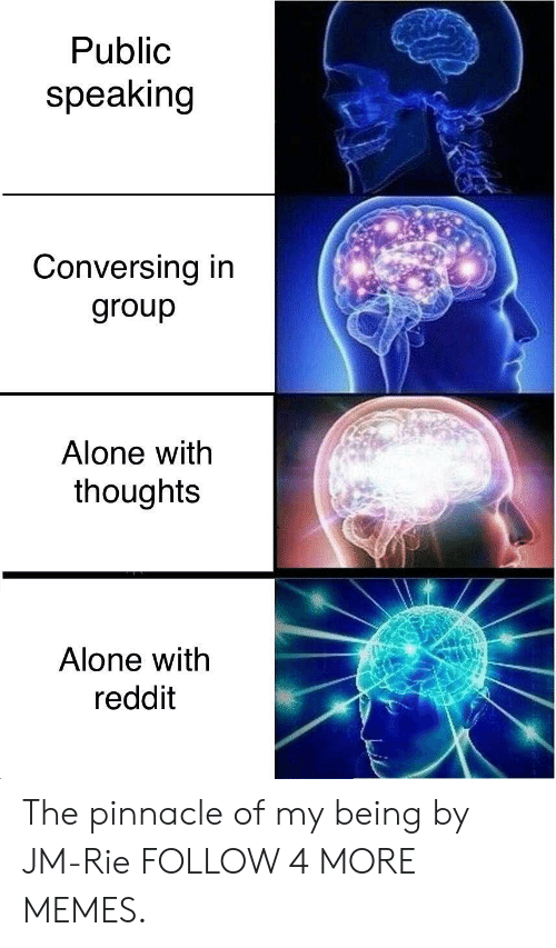 conversing: Public  speaking  Conversing in  group  Alone with  thoughts  Alone with  reddit The pinnacle of my being by JM-Rie FOLLOW 4 MORE MEMES.